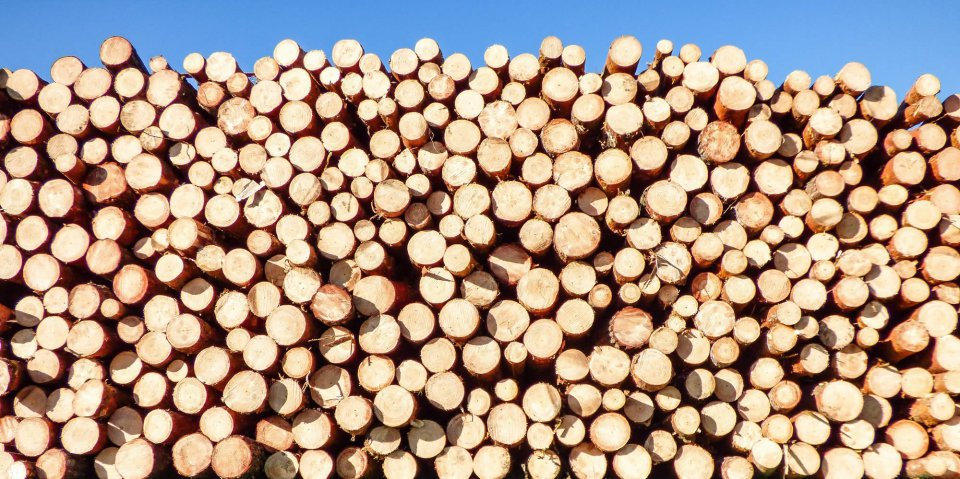 Uk Timber Supplier Ryder Services